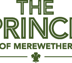 The Prince of Merewether